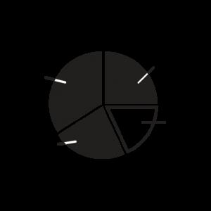 pie-graph-icon-2